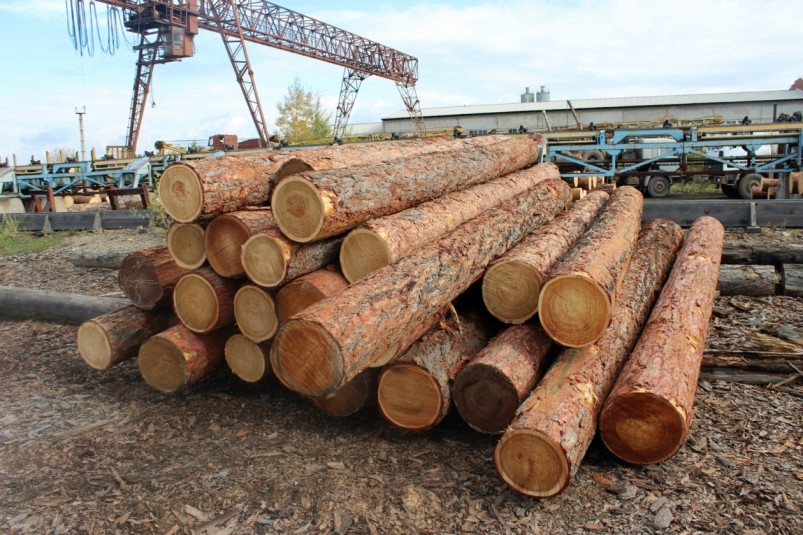 Iida Group Holdings will become co-owners of the largest forest company in the Far East